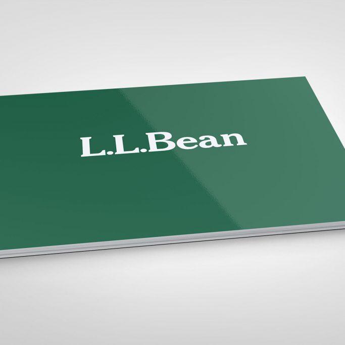 L.L.BEAN | B2B Website